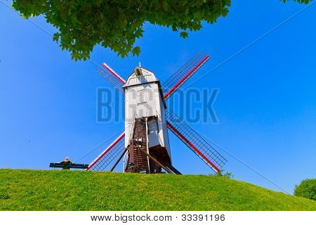 Windmill and green lawn at Brugge