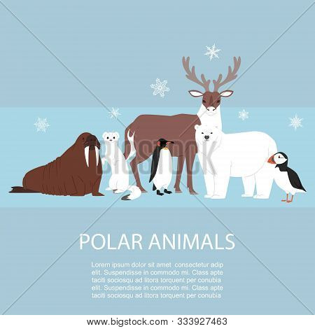 Polar And Arctic Animals And Birds Vector Illustration. Winter, Wild Polar Nature And Travel Concept