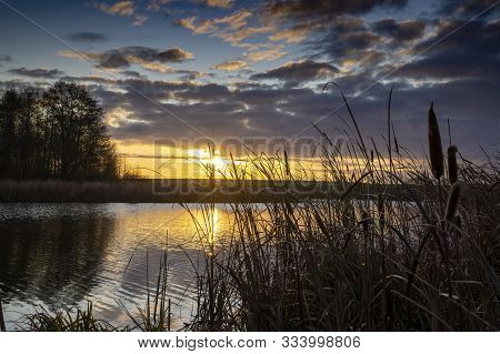 Vivid Orange Sunset With Wispy Clouds Reflected In A Tranquil Lake With Reeds In The Foreground Silh