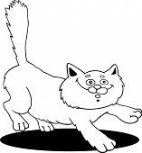 cartoon illustration of running fluffy cat for coloring book poster