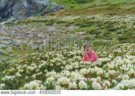 Young woman in mountain rhododendron. Nature and people scene.