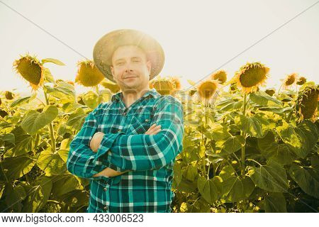 Handsome Farmer With Hat With Crossed Arms In Sunflower Field. Smiling Man Young Farmer Modern Looki