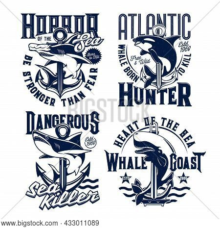Tshirt Prints With Ocean Animals Killer Whale, Hammerhead Shark And Anchors. Vector Mascots For Fish
