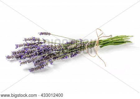 Lavender Flower Bouquet On A White Background, A Bunch Of Lavandula Plants