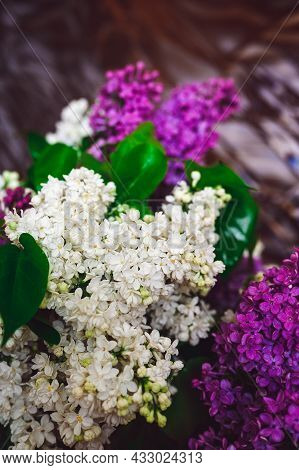 Bouquet Of Purple And White Lilacs On A Glass Background With Reflection And Highlights