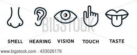 Five Human Senses Vision Eye, Smell Nose, Hearing Ear, Touch Hand, Taste Mouth And Tongue. Line Vect
