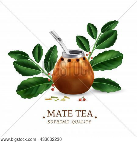 Green Mate Tea Leaves And Traditional Calabash With Bombilla Realistic Vector Illustration
