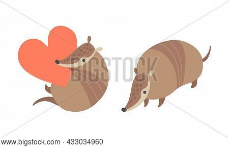 Cute Armadillo Character With Armor Shell Holding Red Heart And Standing Vector Set