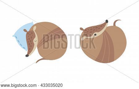Cute Armadillo Character With Armor Shell Curled Up And Sleeping On Pillow Vector Set