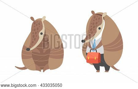 Cute Armadillo Character With Armor Shell Sitting And Standing In Office Suit With Briefcase Vector
