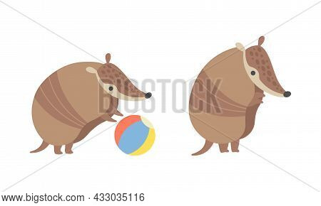 Cute Armadillo Character With Armor Shell Playing With Ball And Standing Vector Set