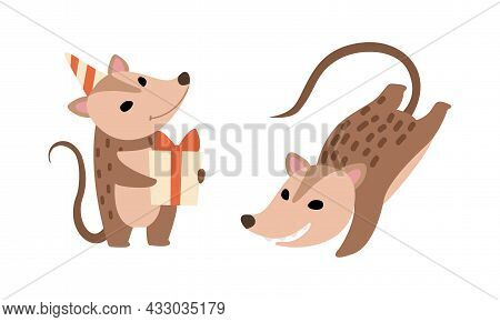 Cute Opossum Animal Holding Gift Box And Jumping Vector Set