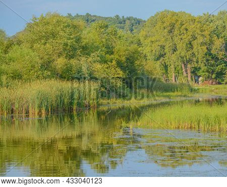 Beautiful Landscape Of The Marsh Area Of Wisconsin River In Sauk County, Wisconsin