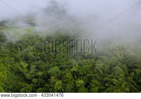 Agricultural Area And Cottage At Green Mountain On Foggy Day Landscape Mist Field On Hill Countrysid