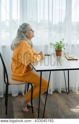Portrait Of Beautiful Old Grandmother With Grey Hair And Face With Wrinkles Looking At The Camera, M