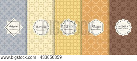 Vector Set Of Geometric Floral Seamless Patterns. Simple Abstract Ornamental Textures With Elegant M