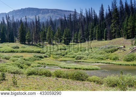 Peaceful Scenery Along The Upper Brooks Lake Trail In Wyoming, Pinnacles Buttes In View
