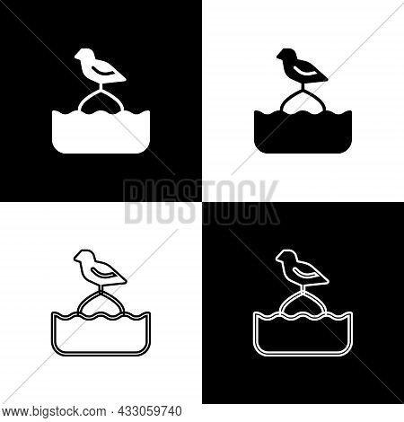 Set Seagull Sits On A Buoy In The Sea Icon Isolated On Black And White Background. Vector