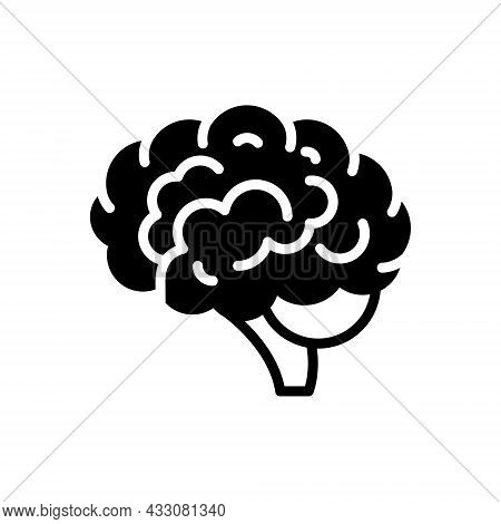 Black Solid Icon For Brain Head Cerebrum Psychology Neurology Human Memory Brainstorm Mind Anatomy C