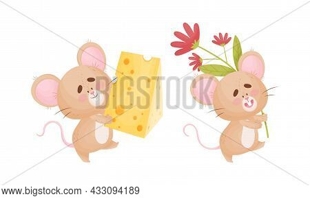 Cute Mouse Character As Small Rodent Carrying Cheese Slab And Flower Vector Set