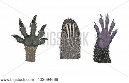Animal Limb With Primate Hairy Paw And Sloth Claw Vector Set