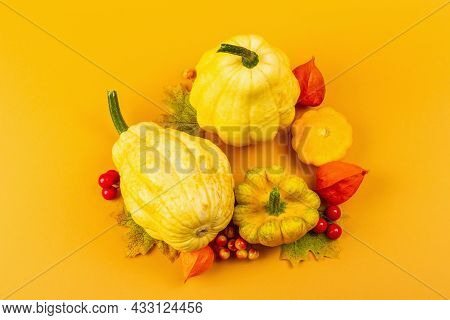 Creative Autumn Composition With Ripe Pumpkins, Fall Leaves, Berries, And Physalis Flowers