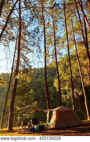 Beautiful Landscape Camping In Pine Forest Trees At Pang-ung, Mae Hong Son, Thailand. It Is A Famous