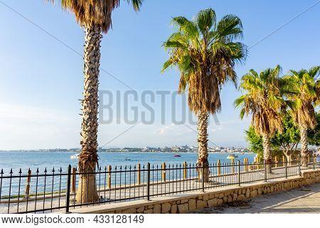Palm Trees On Side Promenade At Sunset, Turkey