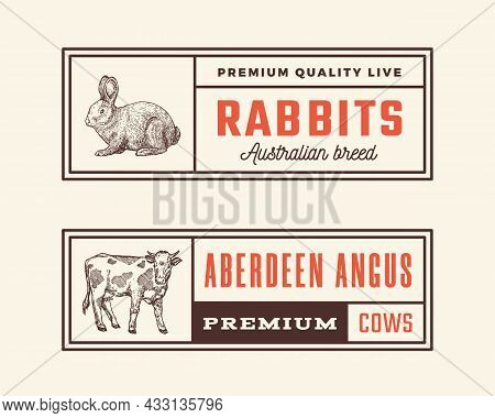 Meat Retro Framed Badges Or Logo Templates Set. Hand Drawn Rabbit And Cow Sketches With Retro Typogr