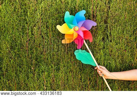 Woman Hand Holding A Colored Big Pinwheel On A Cypress Background With Copy Space