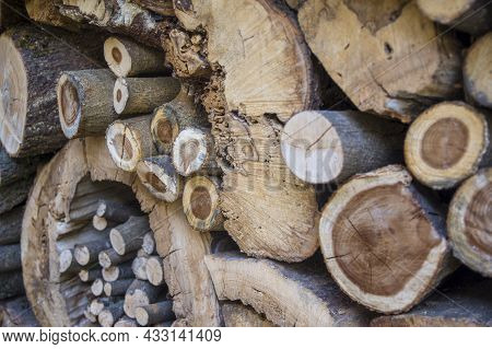 Abstract Textered Pile Of Trees Logs For Kindling A Furnace. Natural Wooden Structured Decor Backgro