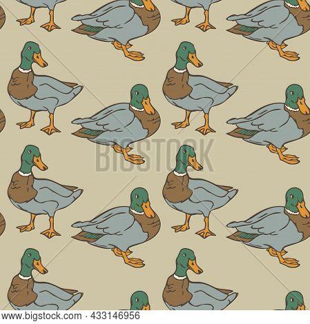 Vector Seamless Pattern With Wild Ducks. Design With Ducks.