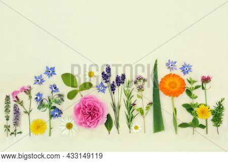 Organic herb and edible flower collection used in herbal plant medicine, seasoning, food decoration. Natural health care concept on hemp paper background. Flat lay, top view, copy space.