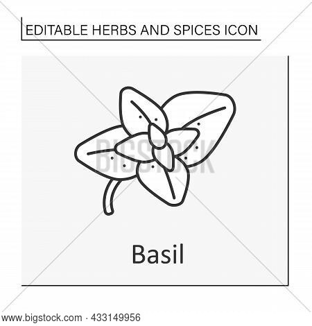 Basil Line Icon. Strong-smelling And Strong-tasting Herb For Cooking. Additional Flavor For Food. He