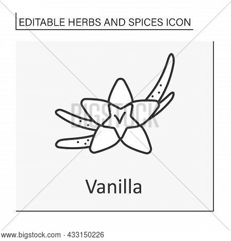 Vanilla Line Icon. Additional Flavor For Food. Vanilla Plant For Food Preparation. Culinary. Herbs A