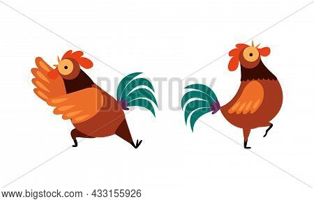 Rooster Or Cock Character Crowing And Walking Flapping Wings Vector Set