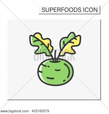 Kohlrabi Color Icon. Superfood. Organic Healthy Energetic Food For Balanced Nutrition. Detox And Wei