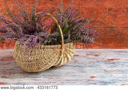 Basket With Flowers On A Red And White Background, Lilac Heather, Copy Space