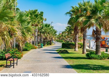 Palm Trees Along Beach Promenade In Side, Turkey