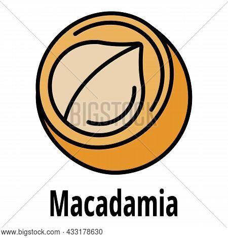 Macadamia Icon. Outline Macadamia Vector Icon Color Flat Isolated On White