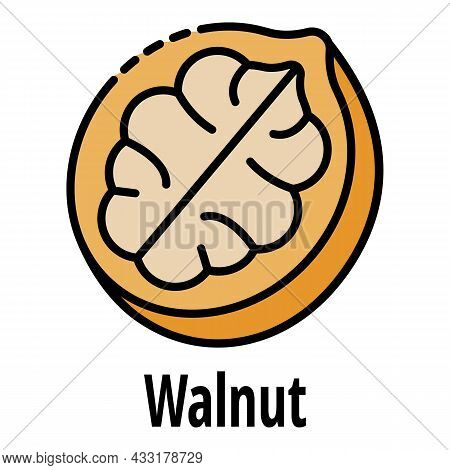 Walnut Icon. Outline Walnut Vector Icon Color Flat Isolated On White
