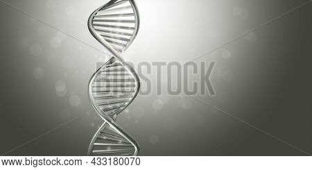 Double-stranded Helix Dna Model In Gray Color.