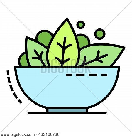Spinach Bowl Icon. Outline Spinach Bowl Vector Icon Color Flat Isolated On White
