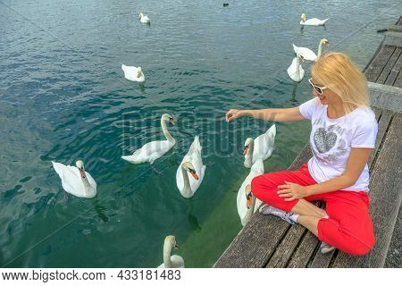 Blonde Tourist Girl Playing With White Swans In Turquoise Waters Of Zurich Lake In Zurich City. Lake