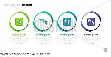 Set Human Footprint, Footprints Shoes, Rabbit And Hare Paw And Horse. Business Infographic Template.