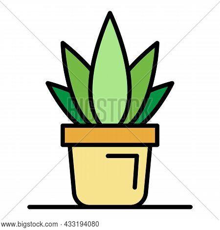 Office Aloe Vera Pot Icon. Outline Office Aloe Vera Pot Vector Icon Color Flat Isolated On White