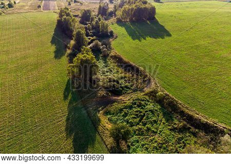 Small Overgrown Ravine Between Agricultural Fields, Aerial View