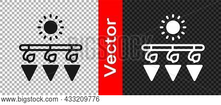 Black Drying Grapes Icon Isolated On Transparent Background. Dried Grapes. Vector