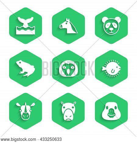 Set Owl Bird, Hippo Or Hippopotamus, Goose, Puffer Fish, Rhinoceros, Frog, Cute Panda Face And Whale