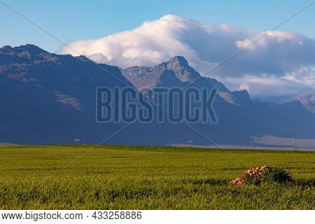 General view of countryside landscape with cloudy sky. environment, sustainability, ecology, renewable energy, global warming and climate change awareness.